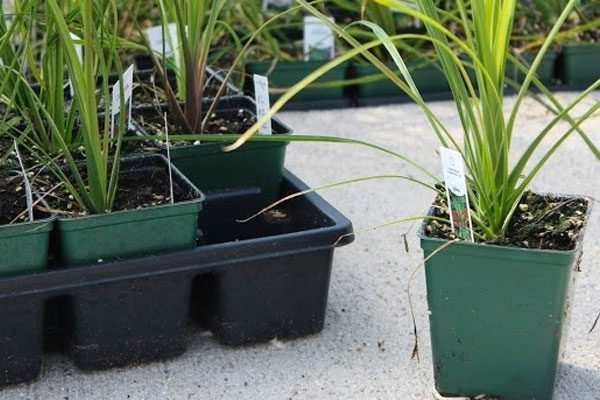 SHUTTLE™ Squares and Pot Carriers